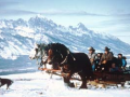 Spring Creek Ranch Dinner Sleigh Rides