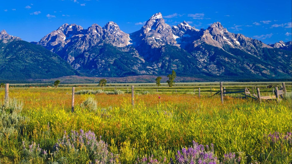 About jackson hole jackson hole history jackson hole for Jackson hole summer vacation