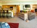 Swans Studio Suite